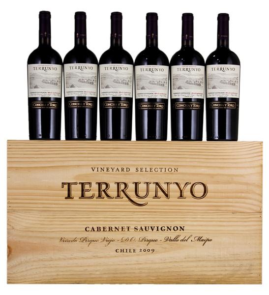 Concha Y Toro Terrunyo Pirque Viejo Vineyard Block Las